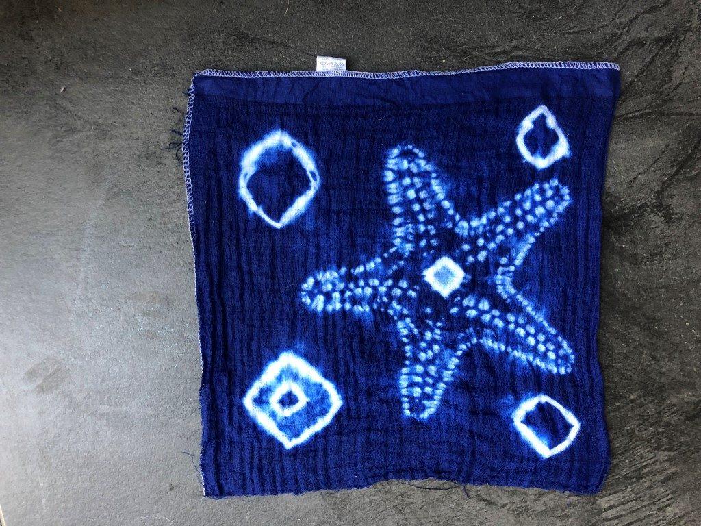 Josefina from chile starfish